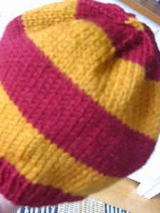 Opal Harry Potter - WEBS Yarn, Knitting Yarns, Knitting